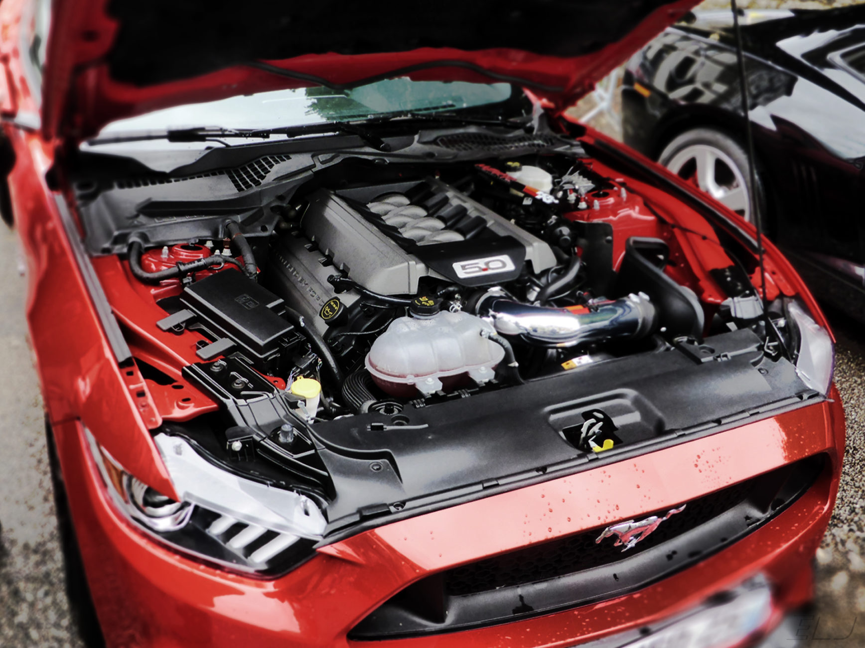 Ford Mustang GT - V8 under the hood - US Cars and Bikes - 2018 - photo ELJ DESIGNMOTEUR