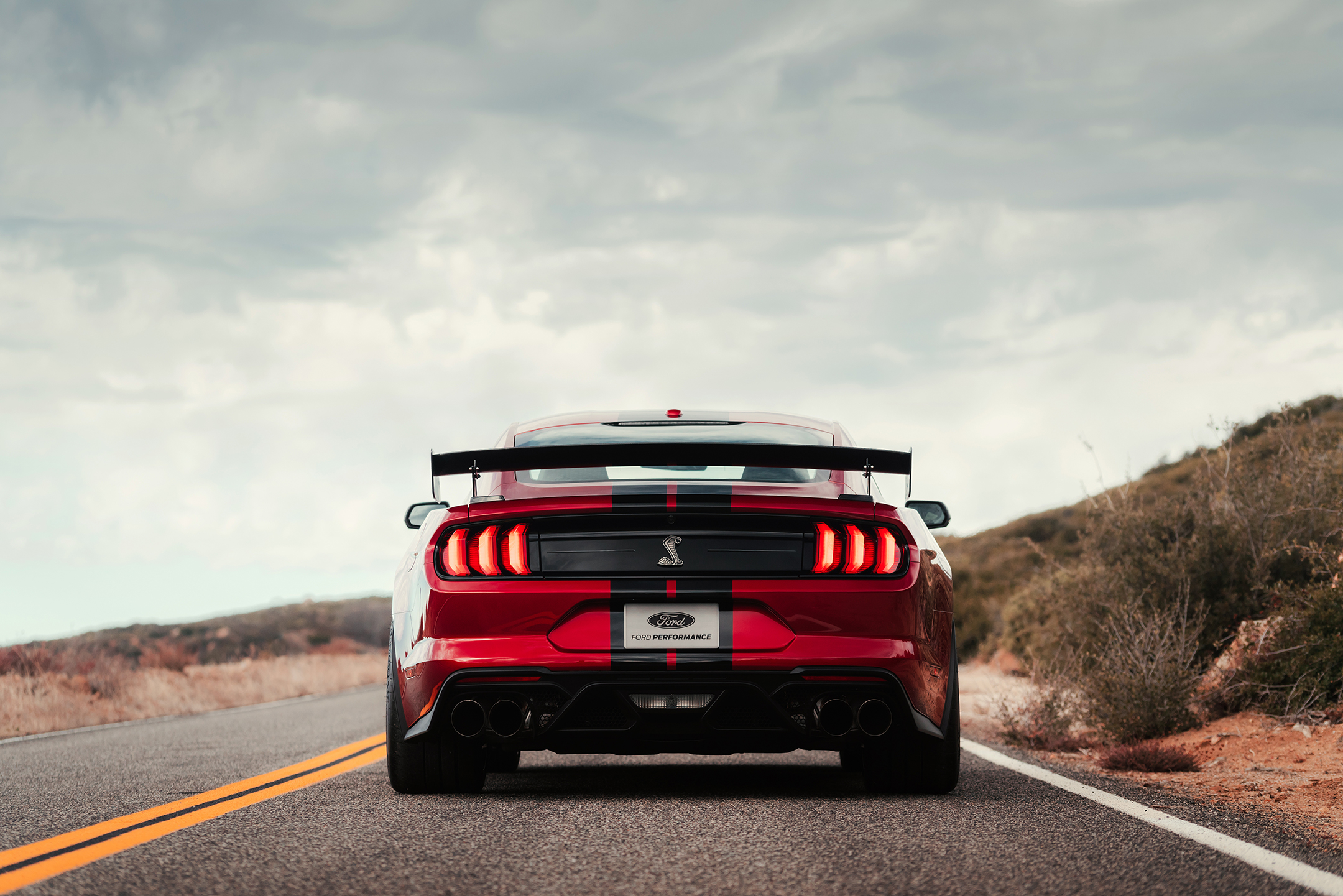 Ford Mustang 2020 Shelby GT500 - 2019 - rear face / face arrière