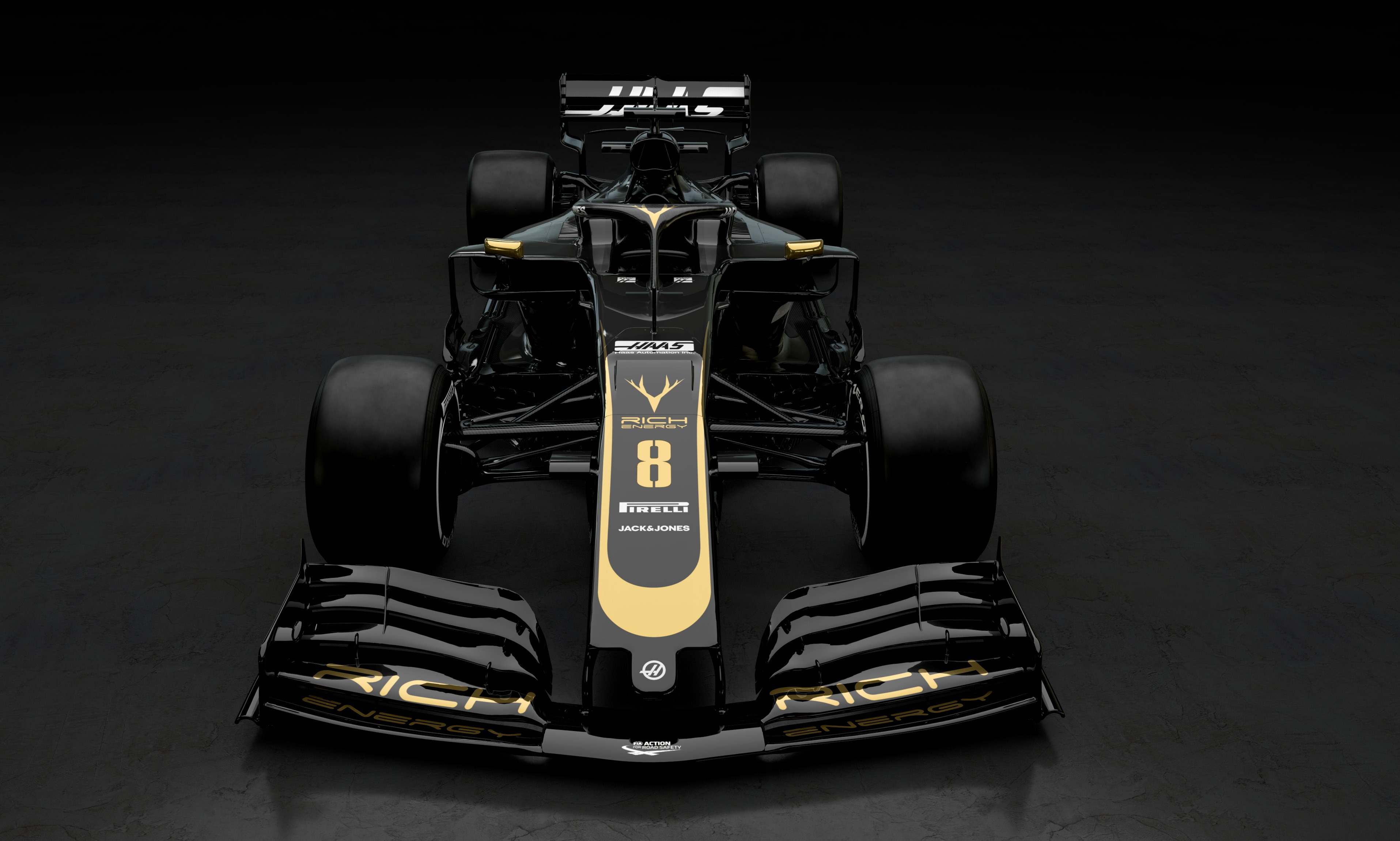 F1 2019 RICH ENERGY HAAS F1 TEAM VF19 - front-face / face avant