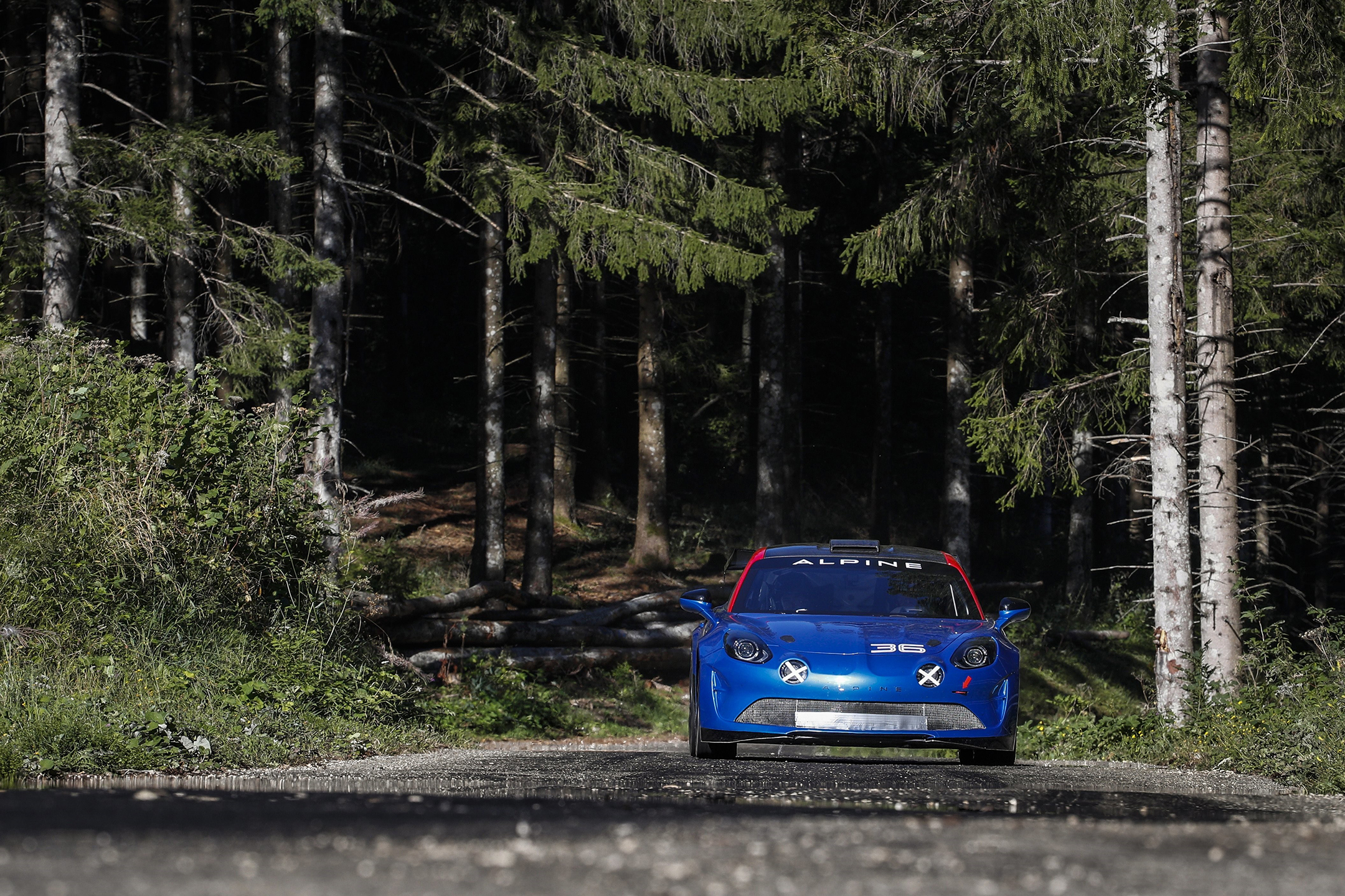 Alpine A110 Rally - 2019 - front-face / face avant - road