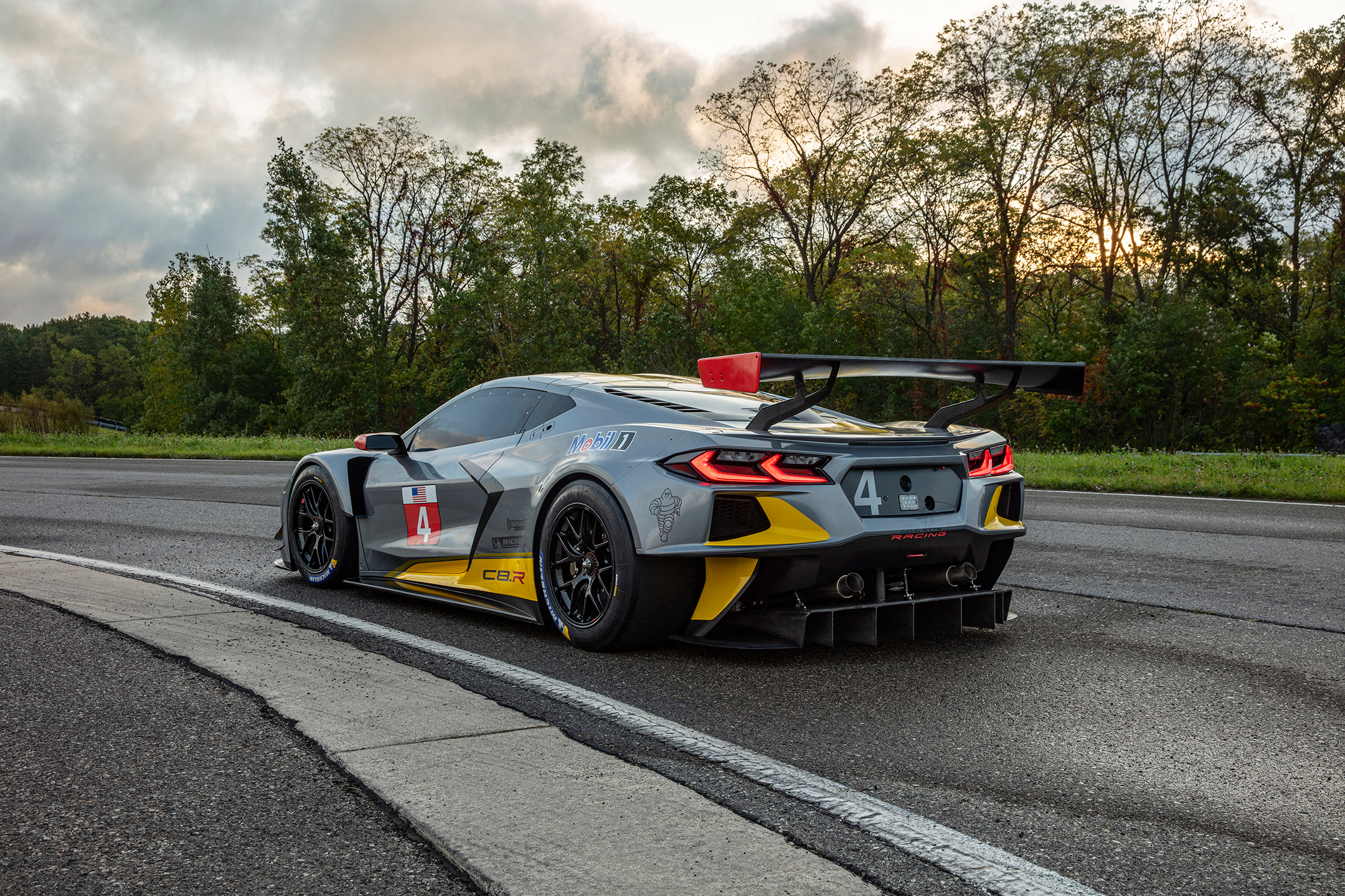 Chevrolet Corvette C8.R - 2019 - rear side-face / profil arrière